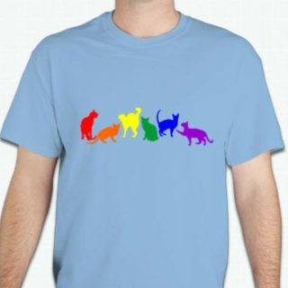 This gay pride cat t-shirt is perfect for cat lovers. The unique design is printed on a Gildan 100% preshrunk cotton t-shirt. Available in light blue men's t-shirt or light pink lady's t- shirt.