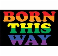 3' x 5' Polyester Born This Way Flag.
