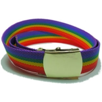 Gay Pride Rainbow Belt. This is a 1-1/4 inch Canvas Web Belt and accented by a military style brass buckle.